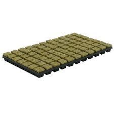 Grodan steenwoltray 4x4 cm 77 stuks per tray