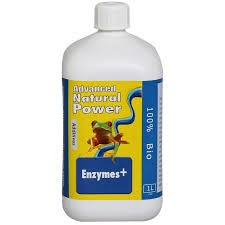 Dutch Formula Enzymen 1L