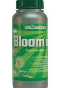 Ecolizer Bloom Up 500ml