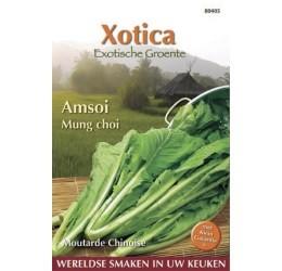 Buzzy Xotica Amsoi Mung Choi zaden (080405)