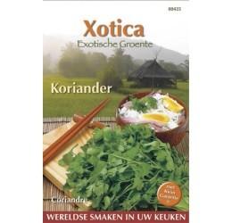 Buzzy Xotica Koriander zaden (080425)
